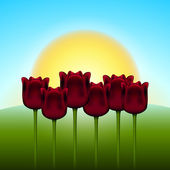 Tulips and sun — Stock Vector