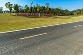 шоссе около леса — Стоковое фото