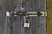 Door Locks — Stockfoto