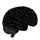 Menselijke hersenen. — Stockvector