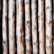 Background pattern from wooden poles. — Foto Stock