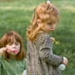 Two young girls in shady, green grass blowing bubbles — Stock Photo