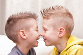 Nose to nose little friends or brothers — Stock Photo