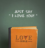 Just say I love you! Love Bible with love commandments, metaphors and quotes — Stock Photo