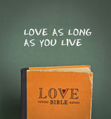 Love as long as you live. Love Bible with love commandments, metaphors and quotes — Stock Photo