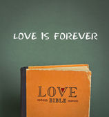 Love is forever. Love Bible with love commandments, metaphors and quotes — Stock Photo