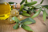 Olives oil — Stock Photo