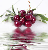 Cherries with water reflection — Stock Photo