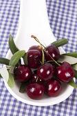 Třešně a višně, samostatný — Stock fotografie