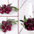 Composition of cherries isolated — Foto Stock