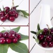 Composition of cherries isolated — Stockfoto