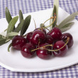 Cherries isolated — Stok Fotoğraf #34299693