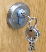 Door with lock and handle — Stock Photo