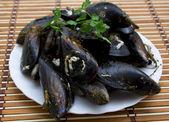 Seafood isolated — Zdjęcie stockowe