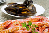 Seafood isolated — Stockfoto