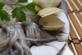 Seafood isolated — Stock Photo