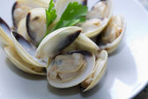 Clams on the plate — Foto Stock