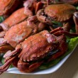 Foto Stock: Seafood isolated