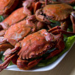 Seafood isolated — 图库照片 #39490889