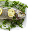 Fish on plate — Stock Photo #39492075