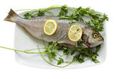 Fish on plate — Stock Photo