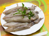 Fresh calamari in plate — Stok fotoğraf