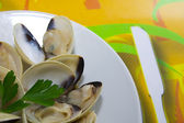 Clams with Parsley — Stock Photo