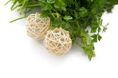 Parsley isolated — Photo