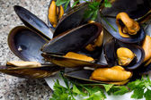 Mussels on dish — Photo