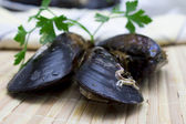 Mussels in the table — Stockfoto