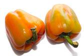 Peperoni isolati — Foto Stock