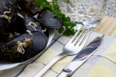 Tasty mussels — Stock Photo