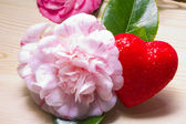 Camellias with heart — Stock fotografie