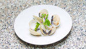 Clams with white background — ストック写真