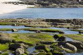 Areamilla beach in Cangas — Stock fotografie
