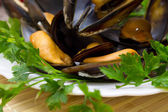 Tasty mussels with parsley — Stockfoto