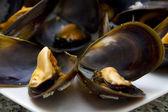 ムール貝の分離 — ストック写真