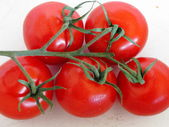 Tomatoes in a white bowl — Stock Photo