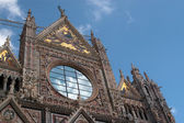 Details of facade of Cathedral in Siena — Stock Photo