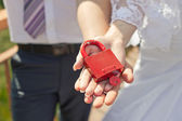 Red hinged lock. — Stock Photo
