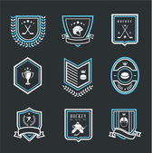 Hockey sport icons — Stock Vector