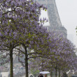 Rainy day in Paris — Foto Stock