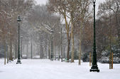 Winter in a city — Stock Photo