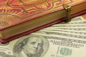 Dólares com diário — Foto Stock