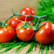 Juicy tomatoes — Stock Photo