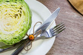 Cabbage on the white plate — Stock Photo