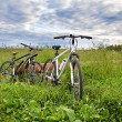 Stock Photo: Two bicycles in grass
