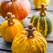 Decorative pumpkins on wooden table — Stock Photo