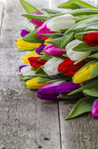 Colorful tulips i on the old wooden table — Stock Photo