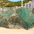 Stock Photo: Fish trap